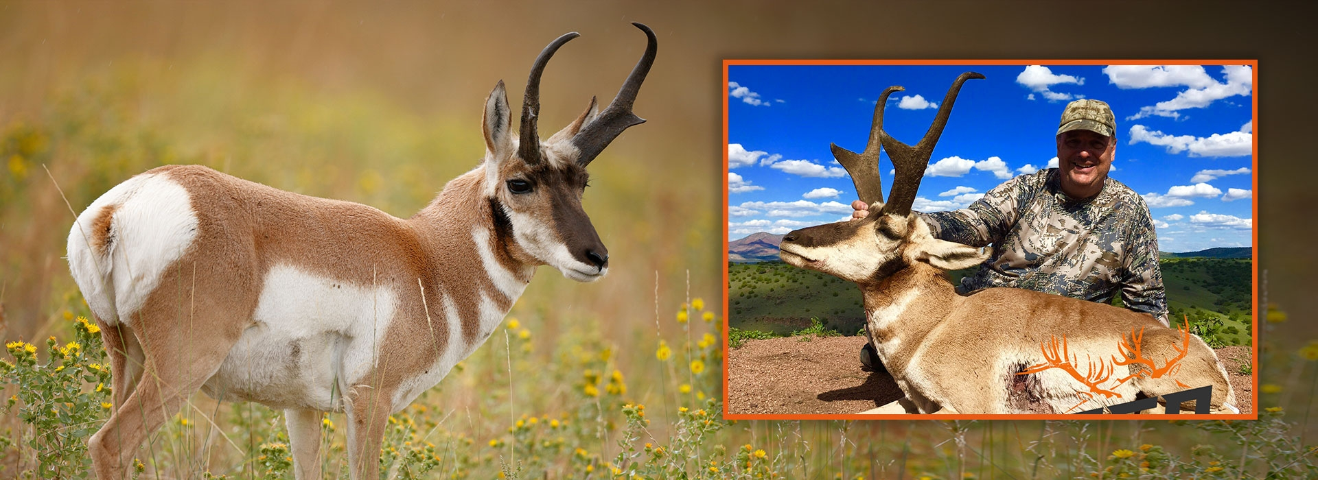 Trophy Antelope Hunts