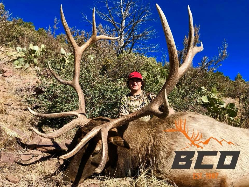 Arizona Trophy Elk Hunts