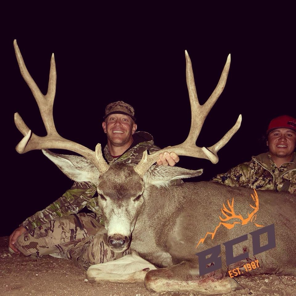 Outfitted Mule Deer Hunts Arizona