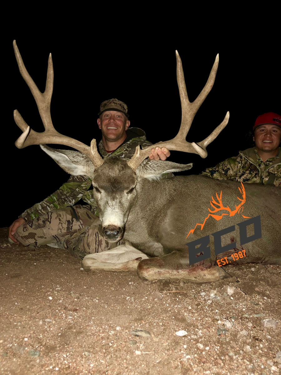 Arizona Trophy Mule Deer Hunts